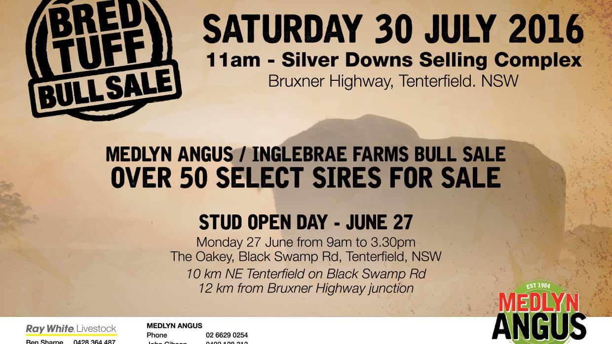 BRED TUFF BULL SALE – July 30 2016